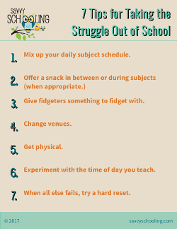 Taking the Struggle Out Homeschool Resource